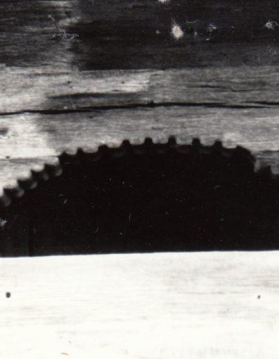 01 Rona de Jos (arhiva DJCMM)