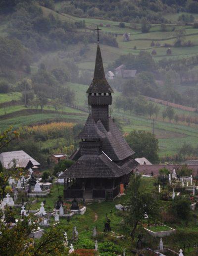 03 Săliște de Sus Nistorești 2011 (foto Gheorghe Petrilă)