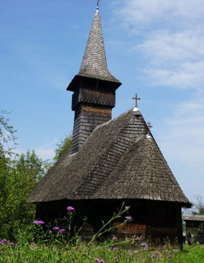 06 Mănăstirea (foto Rada Pavel)