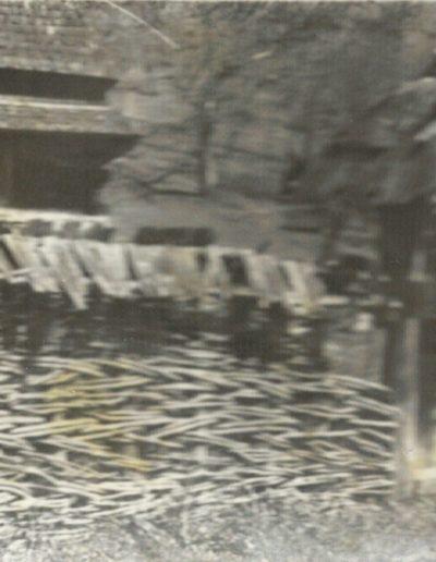 Cornești 1962 - arhiva MJIA (4)