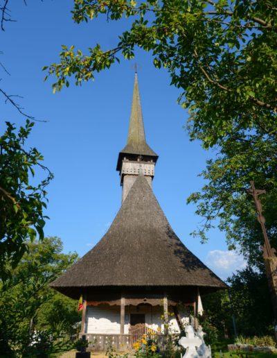 Glod (Foto Timur Chiș) (3)
