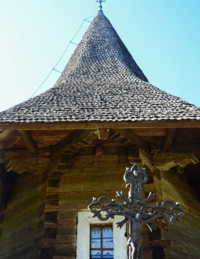 Glod (Foto Timur Chiș) (7)