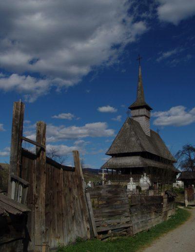 Săliștea de Sus a Bulenilor 2007 (foto Felician Săteanu) (4)